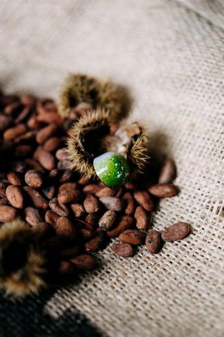 20201022 - PREVIEW Van Dender Chocolates - © Chantal Arnts 66